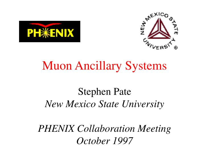 Muon Ancillary Systems