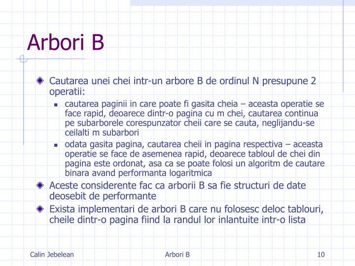 Arbori B