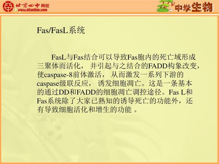 Fas/FasL