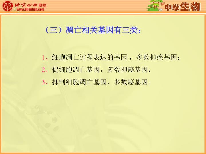 (三)凋亡相关基因有三类: