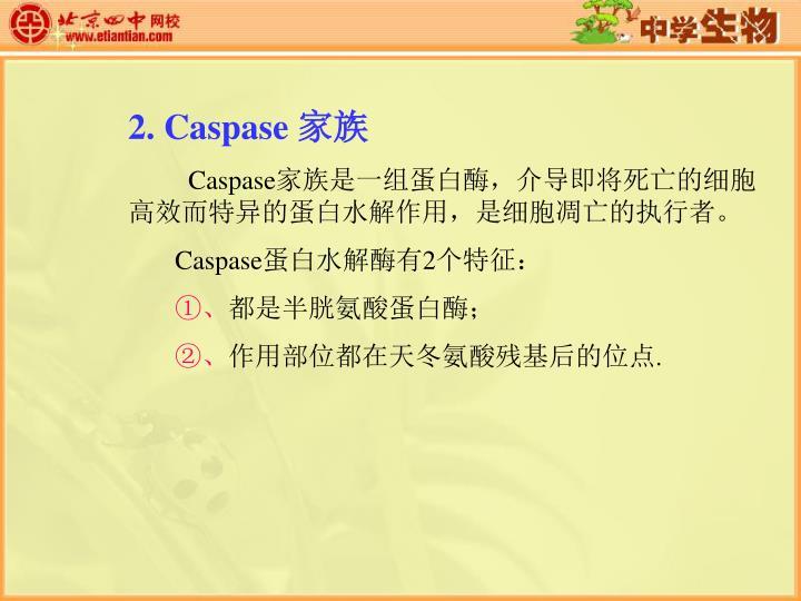 2. Caspase
