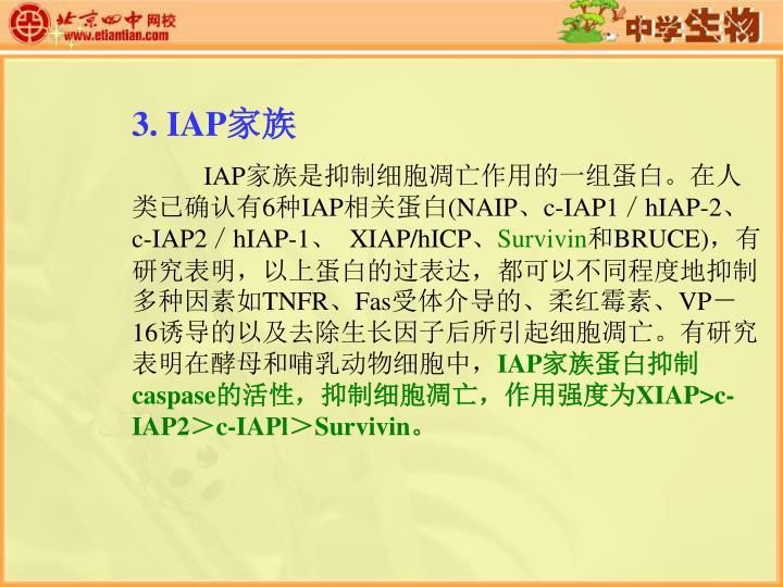 3. IAP