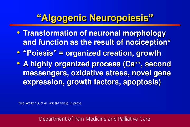 """Algogenic Neuropoiesis"""