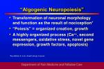 algogenic neuropoiesis