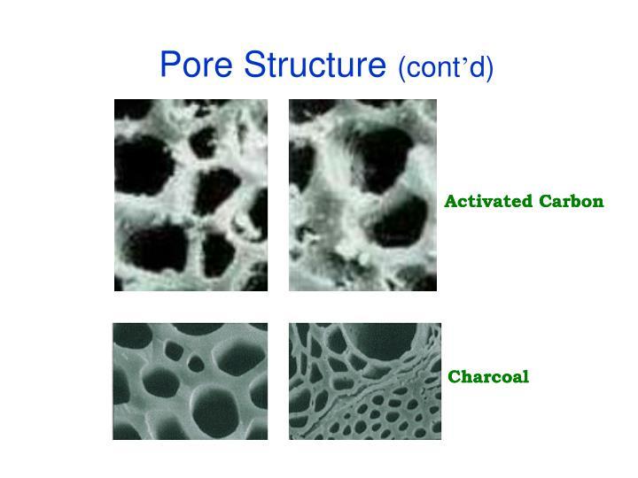Pore Structure