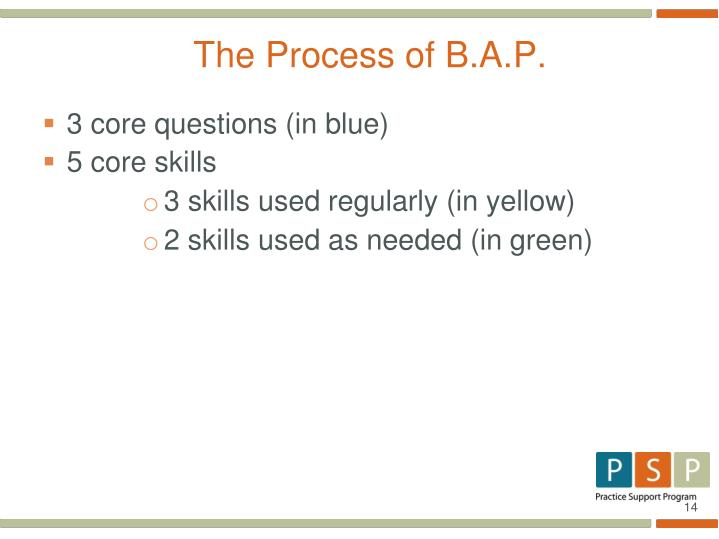 The Process of B.A.P.