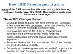 how chip fared in 2005 session1