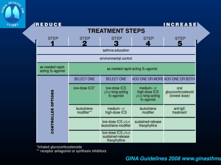 GINA Guidelines 2008 www.ginasthma.org