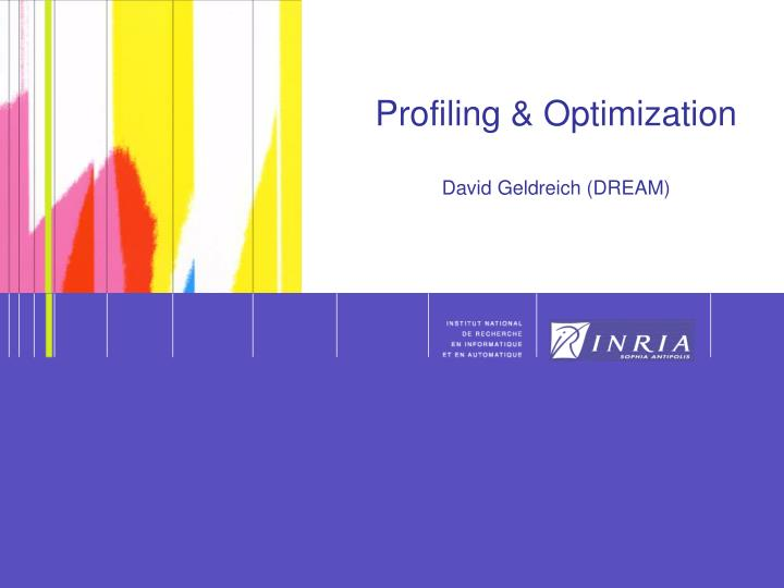 Profiling optimization david geldreich dream