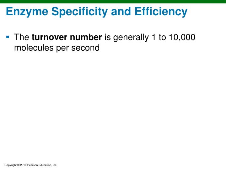 Enzyme Specificity and Efficiency