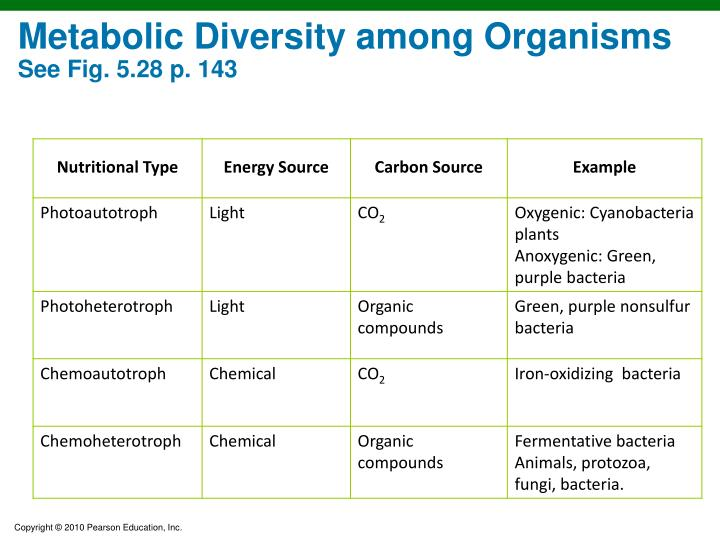 Metabolic Diversity among Organisms
