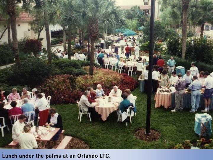 Lunch under the palms at an Orlando LTC.