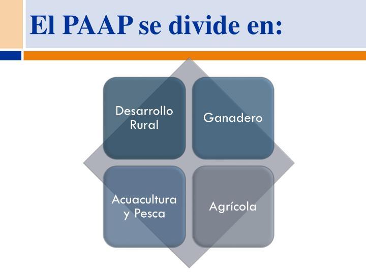El PAAP se divide en: