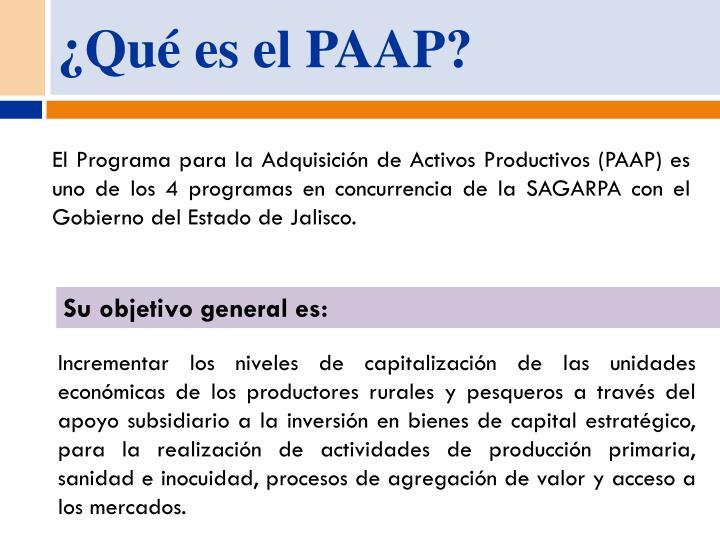 ¿Qué es el PAAP?