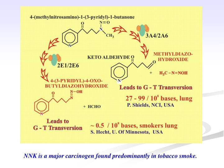 NNK is a major carcinogen found predominantly in tobacco smoke.