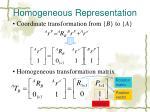 homogeneous representation