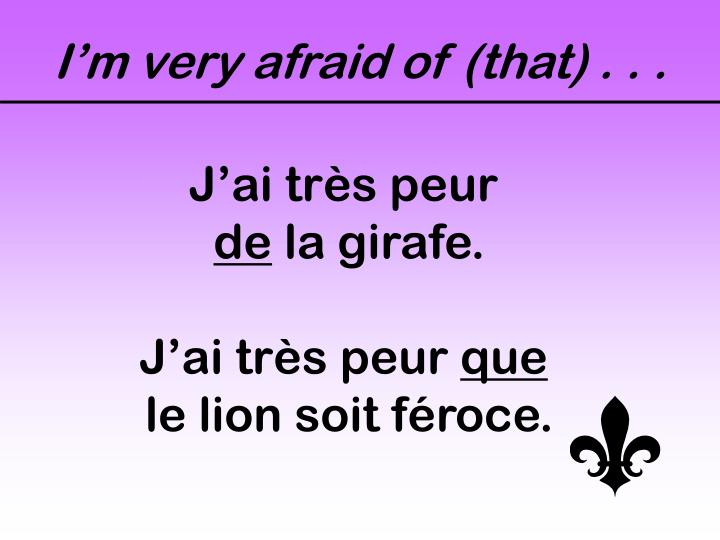 I'm very afraid of (that) . . .