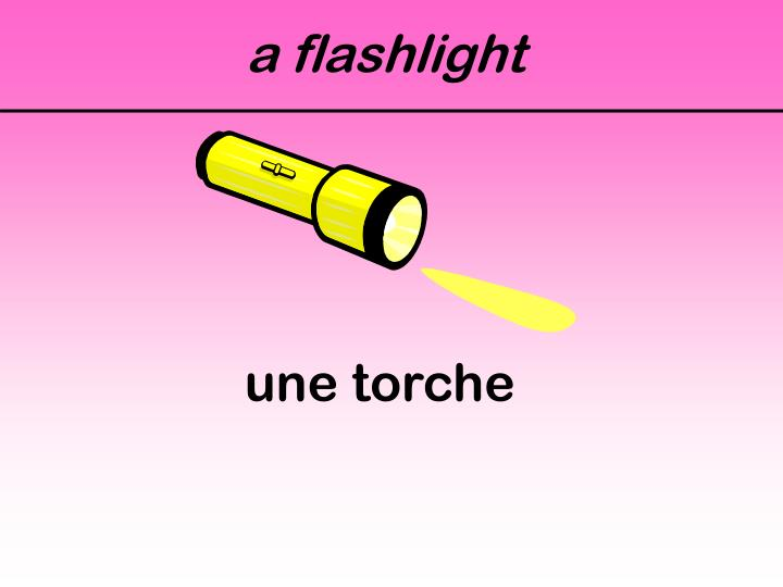 a flashlight