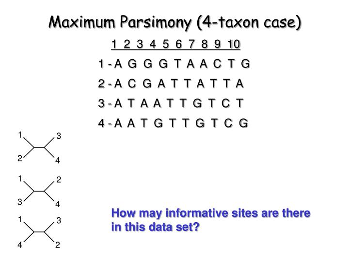 Maximum Parsimony (4-taxon case)