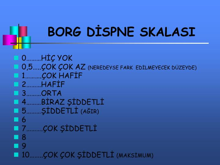 BORG DİSPNE SKALASI