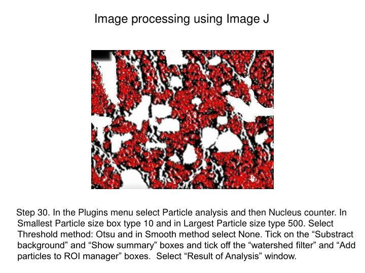 Image processing using Image J