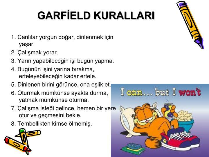 GARFİELD KURALLARI