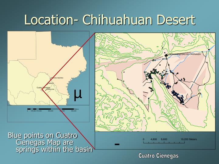 Location- Chihuahuan Desert