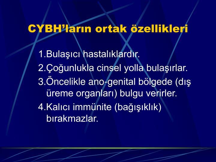 CYBH'ların ortak özellikleri