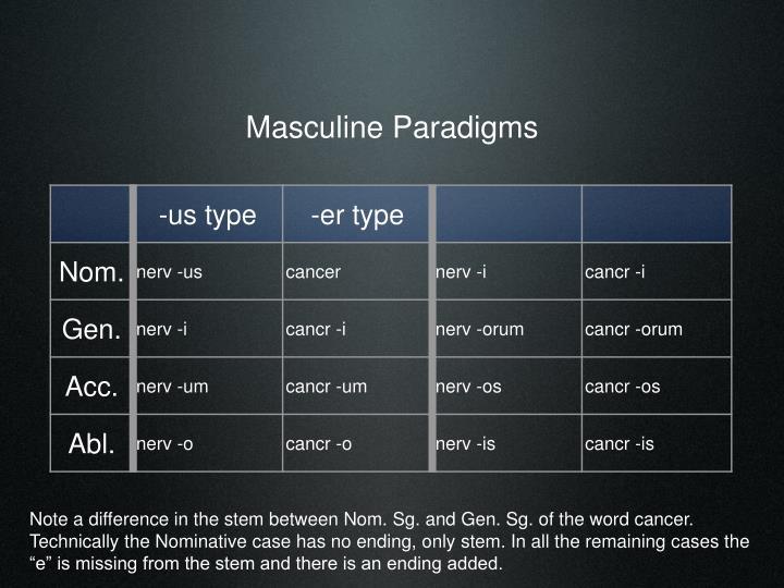 Masculine Paradigms