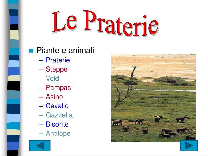 Le Praterie