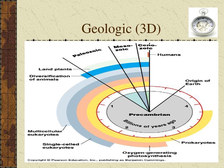 Geologic (3D)