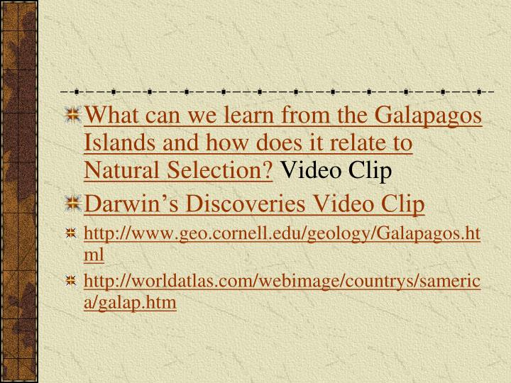 What can we learn from the Galapagos Islands and how does it relate to Natural Selection?