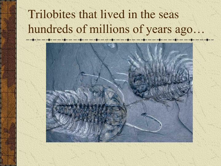 Trilobites that lived in the seas hundreds of millions of years ago…
