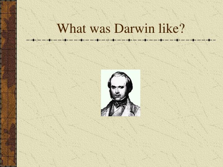 What was Darwin like?