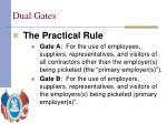 dual gates6