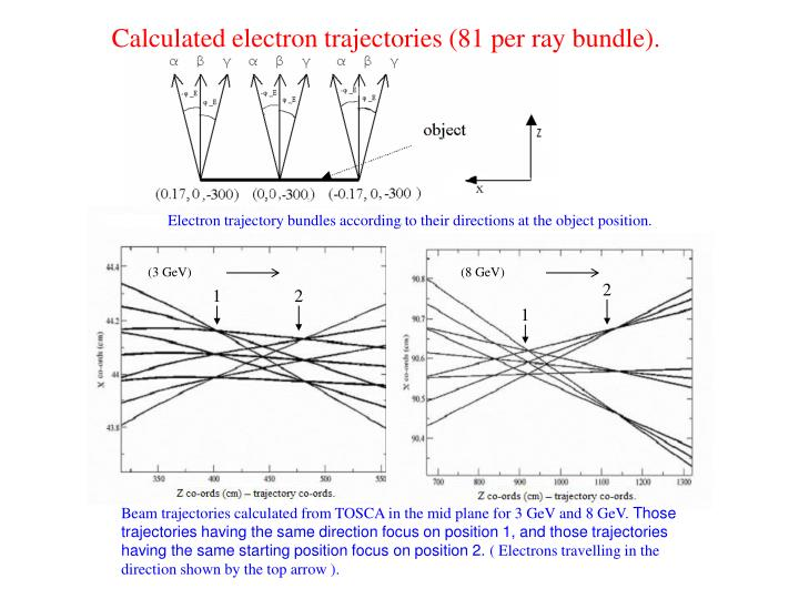 Calculated electron trajectories (81 per ray bundle).