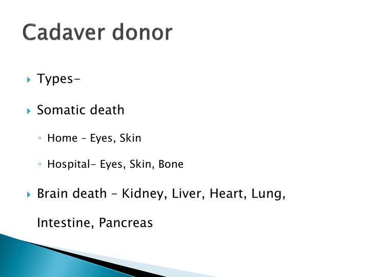 Cadaver donor