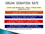 organ donation rate