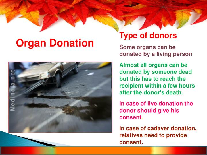 Type of donors