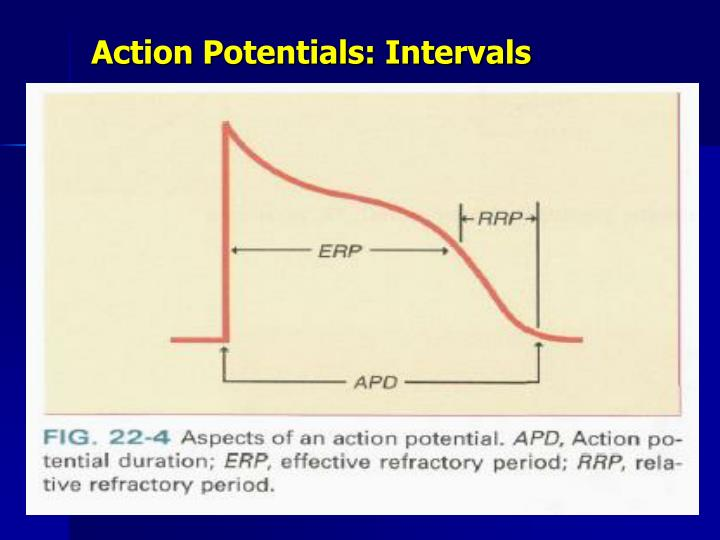 Action Potentials: Intervals