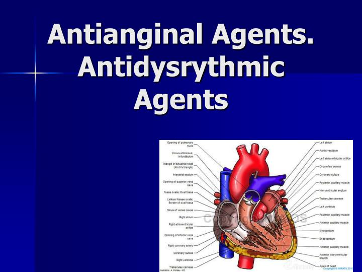 Antianginal agents antidysrythmic agents