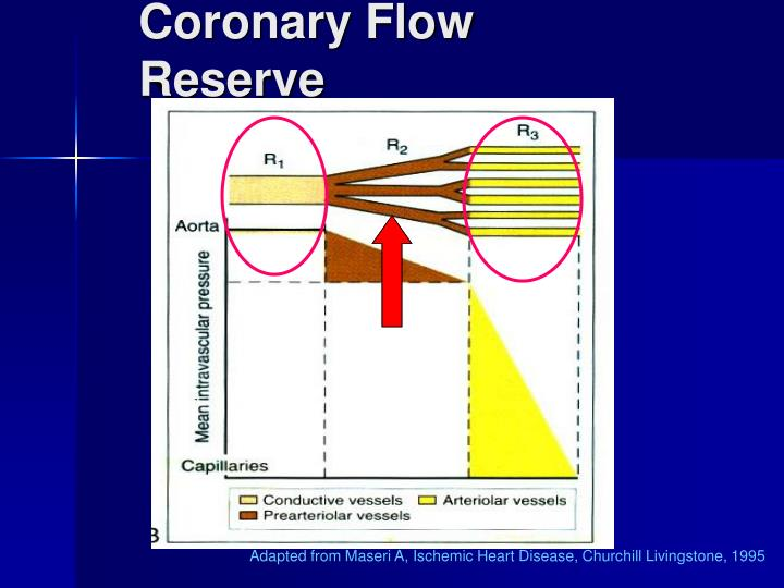 Coronary Flow Reserve