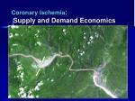 coronary ischemia supply and demand economics1