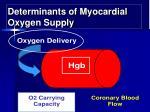 determinants of myocardial oxygen supply