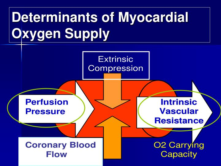 Determinants of Myocardial Oxygen Supply