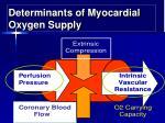 determinants of myocardial oxygen supply1