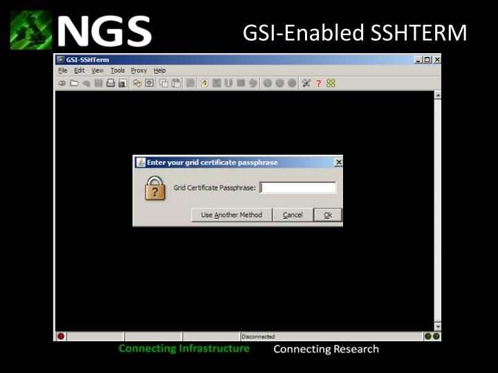 GSI-Enabled SSHTERM