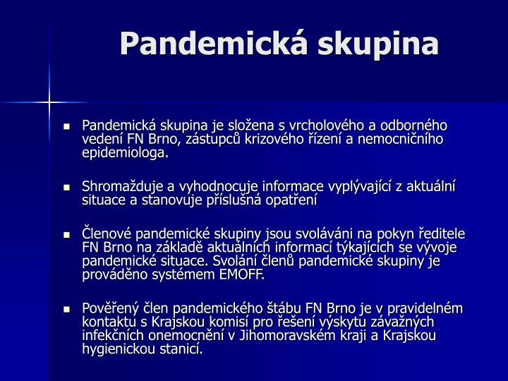 Pandemická skupina