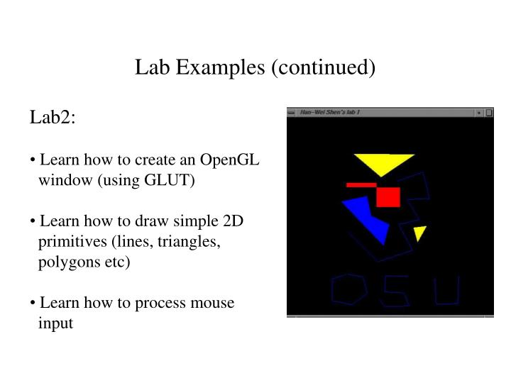Lab Examples (continued)
