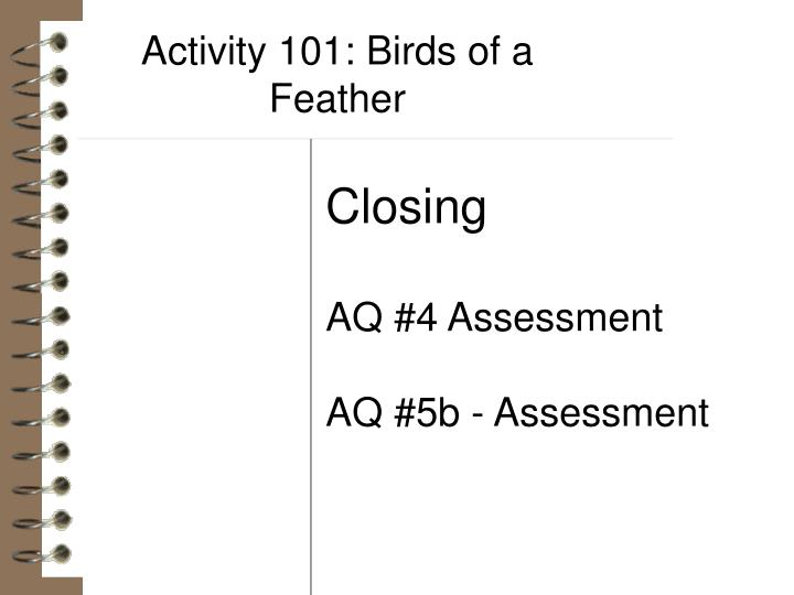 Activity 101: Birds of a Feather